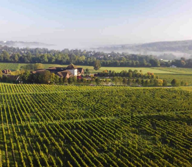 Denbies Vineyard Hotel in Surrey opening Spring 2019