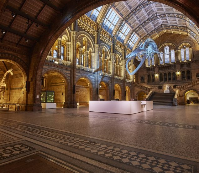 The Luna Cinema teams up with The Natural History Museum for Valentine's