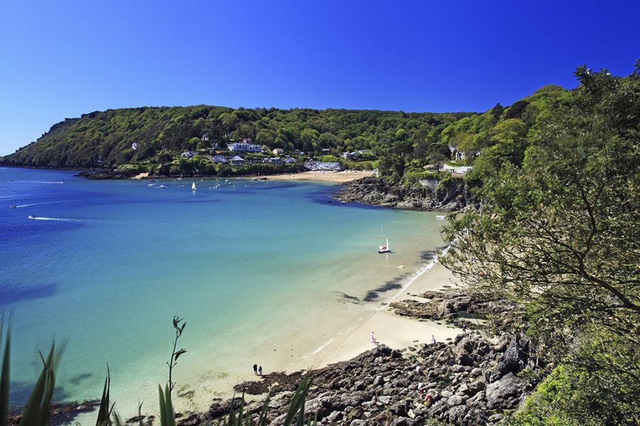 Salcombe Beach Devon England