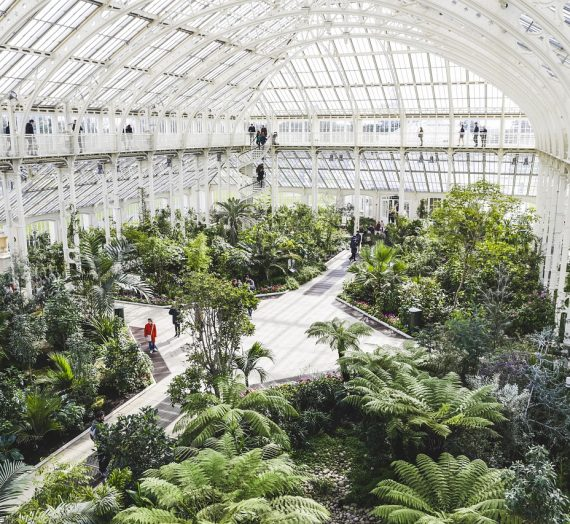 The 10 best UK eco-attractions for a conscious post-lockdown day trip