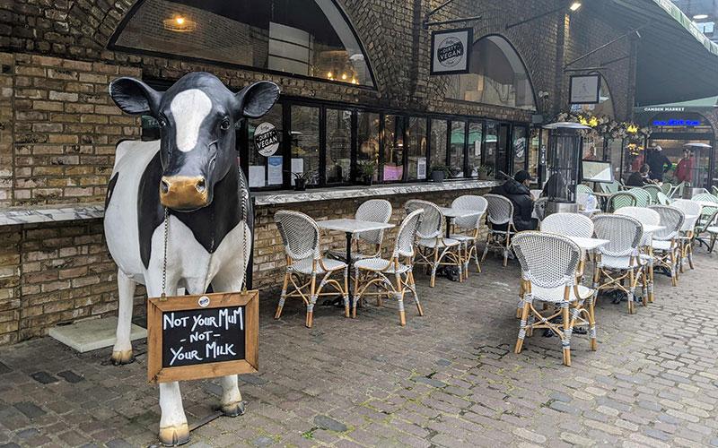 Rudy's Vegan Diner Camden terrace