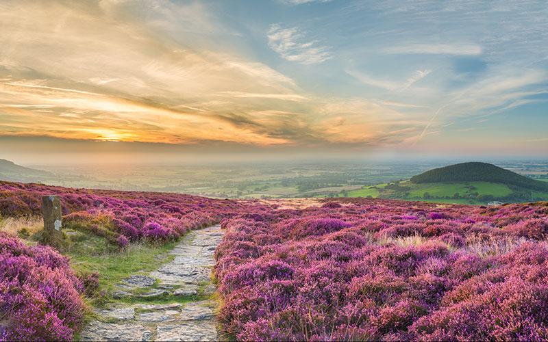 Yorkshire Dales ©VisitBritain Thomas Heaton