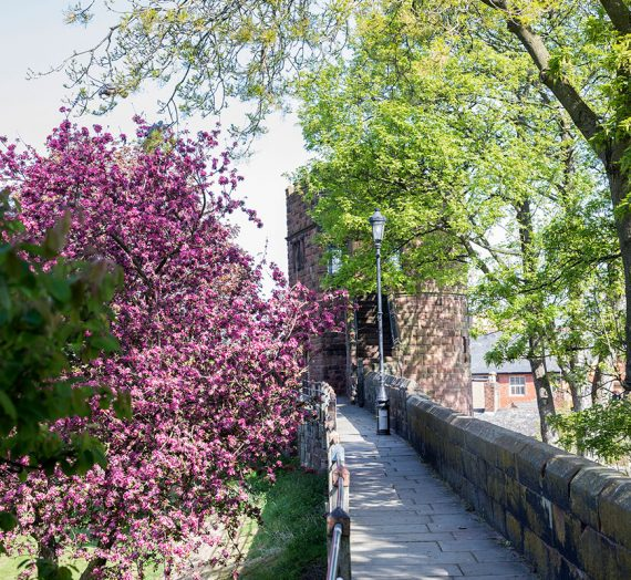 Walking Tour of Chester City Walls